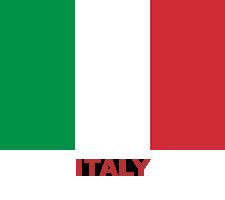 ing-flag (10)