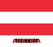 ing-flag (3)