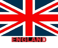 ing-flag (6)