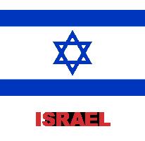 ing-flag (9)